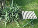 Tapeta Zahradní zátiší