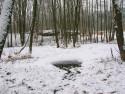 Tapeta Zamrzlé jezírko
