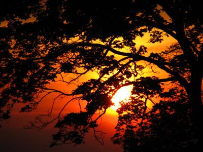 Tapeta: západ na západě