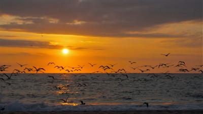 Tapeta: Západ slunce8