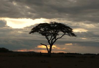 Tapeta: západ slunce v africe