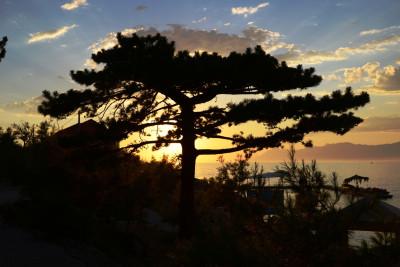Tapeta: Západní