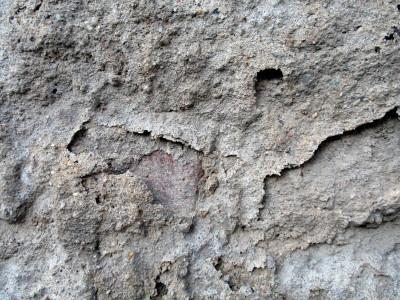 Tapeta: Zeď v Židenicích 41
