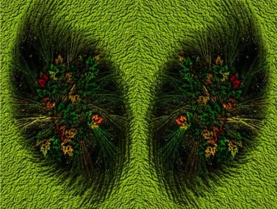Tapeta: Zelené plíce