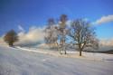 Tapeta zima nad Rychnovem