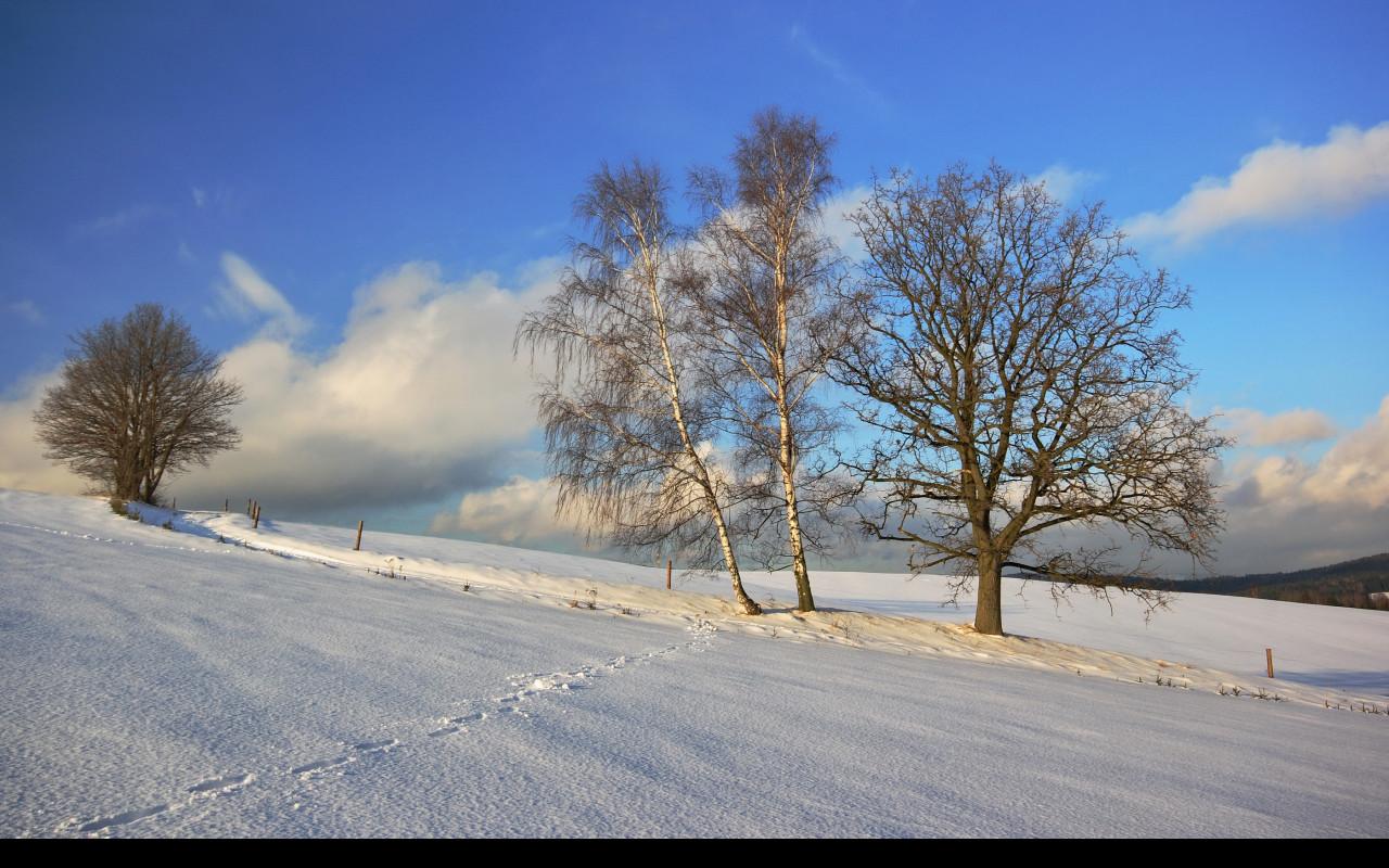 Tapeta zima_nad_rychnovem