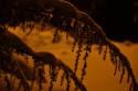 Tapeta Zima pod lampou 6