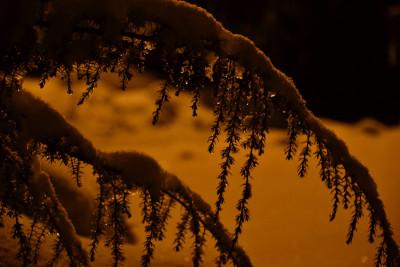 Tapeta: Zima pod lampou 6