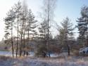 Tapeta Zima u rybníka
