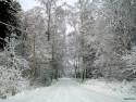 Tapeta Zima Švédska