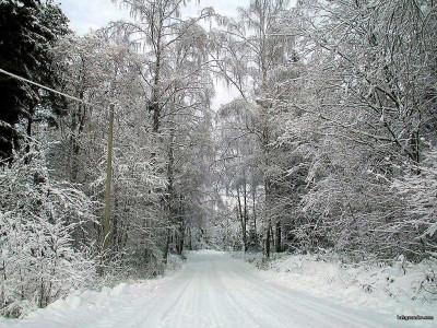 Tapeta: Zima Švédska