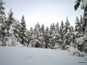 Tapeta Zima Švédska 11
