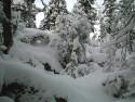 Tapeta Zima Švédska 13