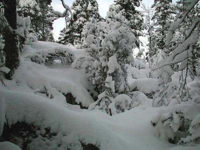 Tapeta: Zima Švédska 13