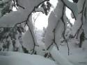 Tapeta Zima Švédska 14