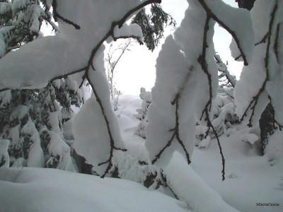 Tapeta: Zima Švédska 14