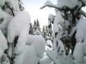 Tapeta Zima Švédska 16