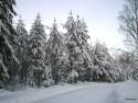 Tapeta Zima Švédska 18