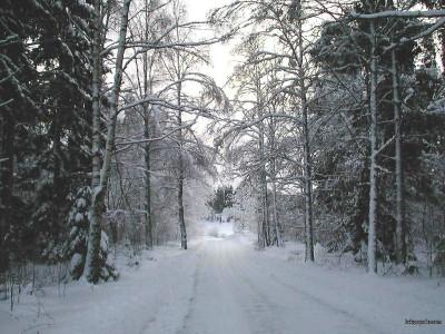 Tapeta: Zima Švédska 19