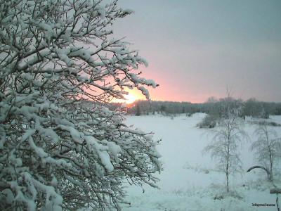 Tapeta: Zima Švédska 9