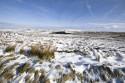 Tapeta Zimní krajina
