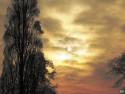 Tapeta Zimní slunce 1