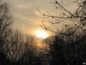 Tapeta Zimní slunce 2