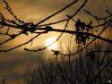 Tapeta Zimní slunce 3