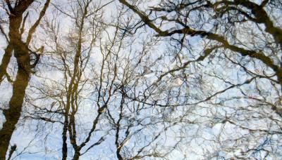 Tapeta: zrcadlení